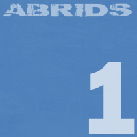 Abrids grunge alternative rock album 1