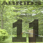 abrids album 11 rock alternatif