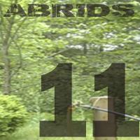 Abrids album 11