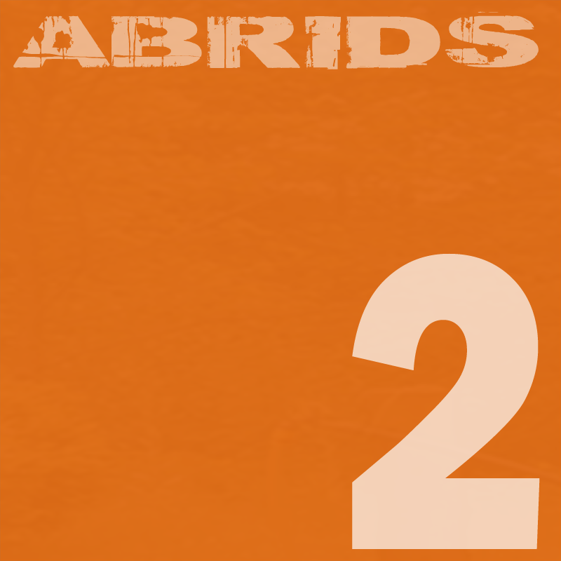 Abrids grunge alternative rock album part 2