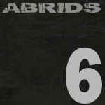 album 6 rock alternatif abrids