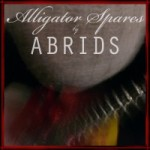 rock alternatif grunge stoner abrids alligator spares