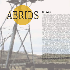 album abrids grunge rock alternative music